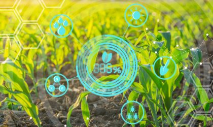 Che cos'è l'agricoltura sostenibile e quanto vale il mercato italiano